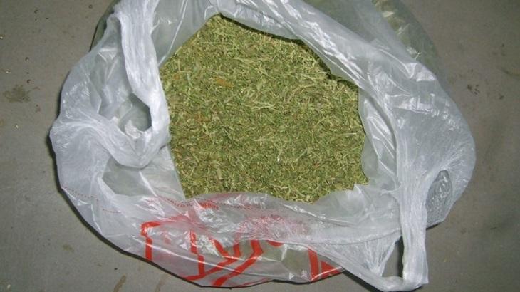 В Астрахани задержан любитель марихуаны