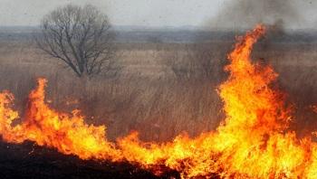 Оппозицию хотят обвинить в астраханских пожарах