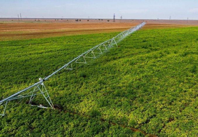 В Астраханской области собирают урожай бахчевых и картофеля