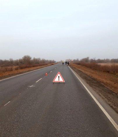 Лошади стали причиной аварии под Астраханью