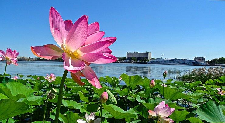 В Астрахань идёт потепление