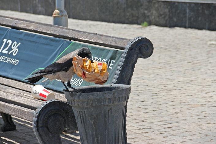 В Астрахани катастрофически не хватает урн для мусора