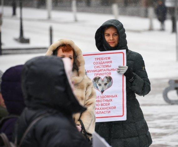 В Астрахани зоозащитники провели митинг