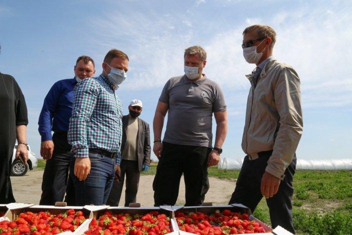 Игорь Бабушкин ознакомился с успехами астраханских аграриев