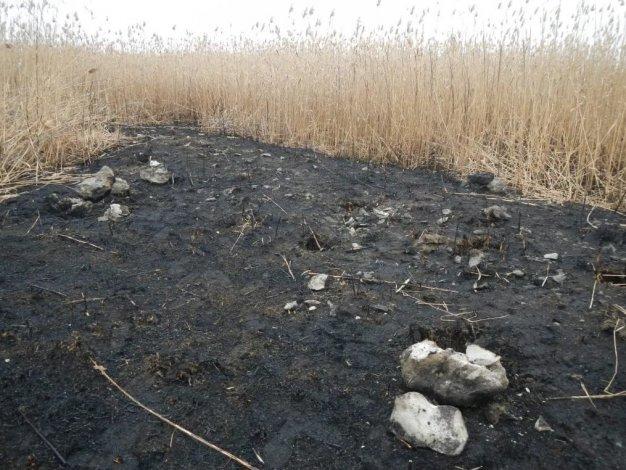 Уникальная историческая находка под Астраханью оказалась в опасности