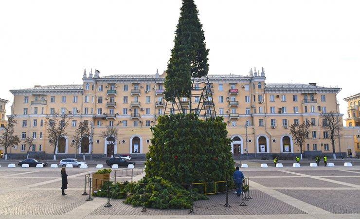 Новогодняя ёлка в Астрахани стала выше