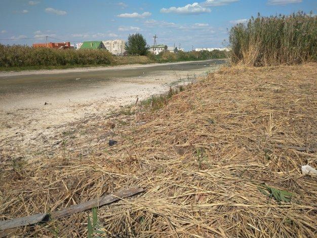 В Астрахани почистили часть Царева