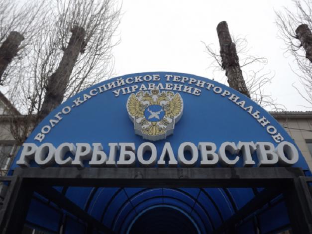 Рыбоохрана активно патрулирует акваторию Астраханской области