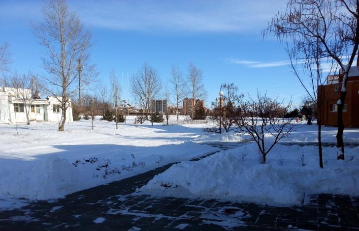 В соседнем с Астраханью регионе выпал сильный снег