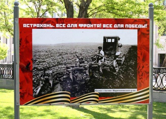 В Братском саду открылась уникальная фотовыставка