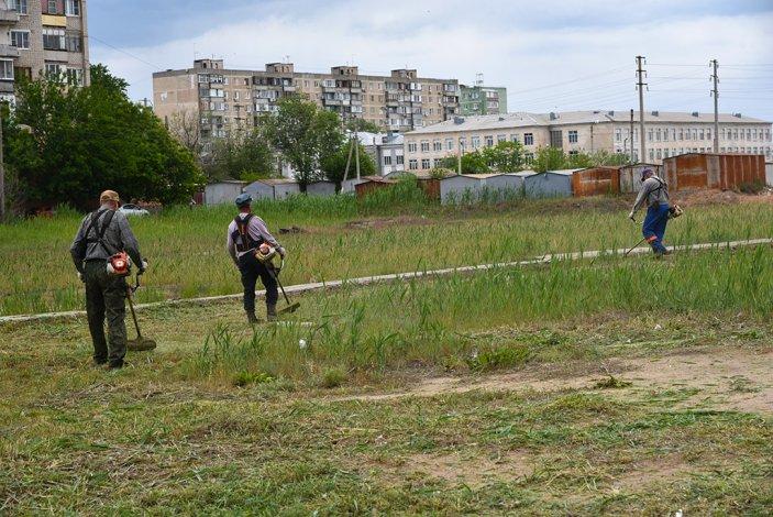 Власти Астрахани борются с камышом