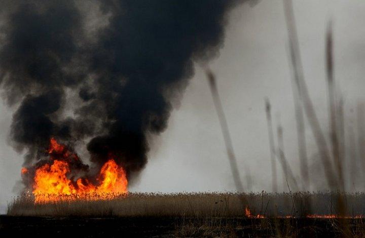 В Астрахани создан штаб против пожаров в дельте Волги