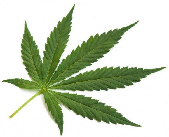 Казахстанца судят в Астрахани за марихуану