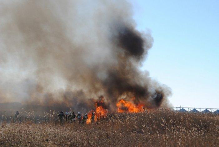 Астраханцы продолжают поджигать камыш