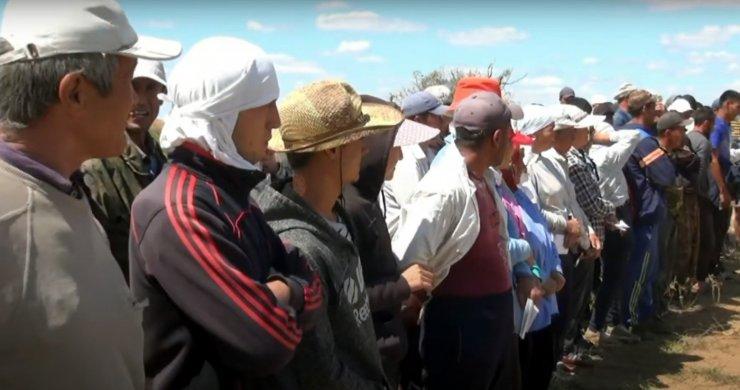 Назван уровень занятости мигрантов в Астраханской области