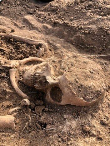 В Астрахани готовятся к крупной археологической экспедиции