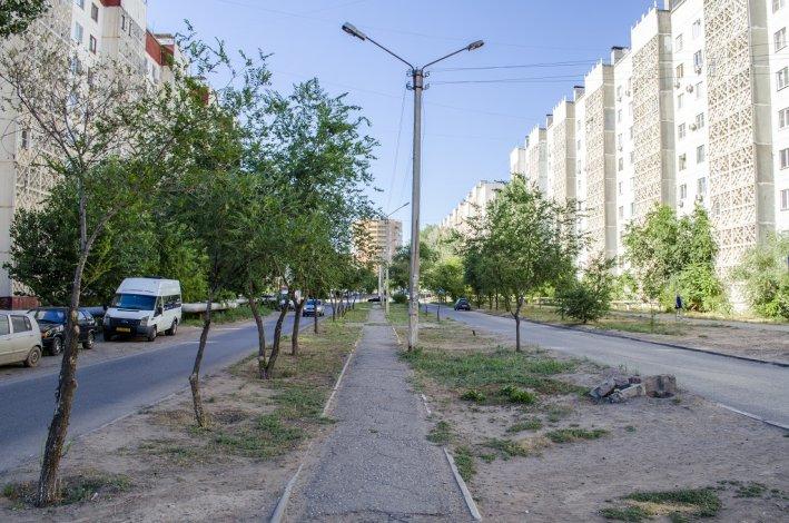 Народный бюджет и аллея на улице Барсовой