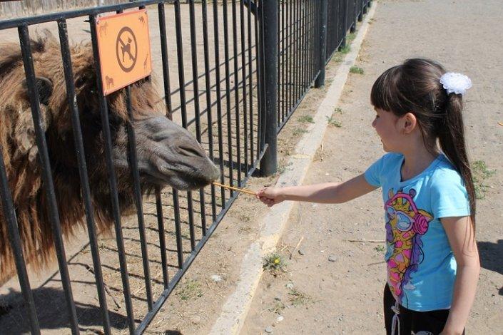 Астраханский зоопарк возобновил свою работу