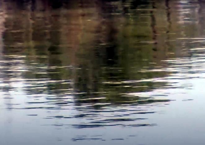 МЧС заявило о старте паводков в ЮФО и СКФО
