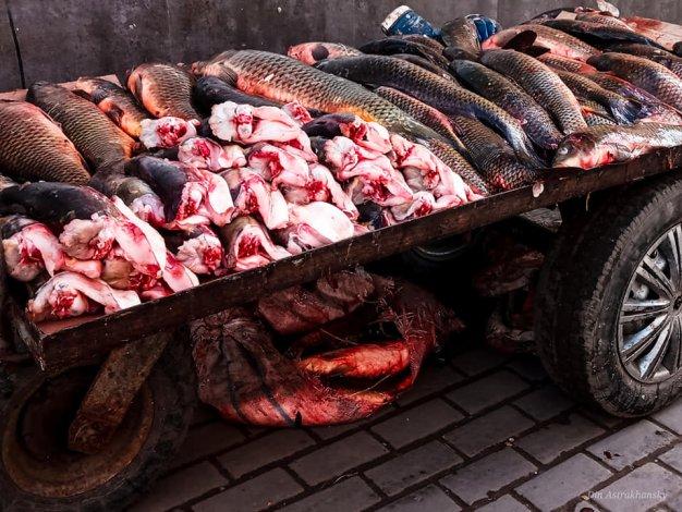 Астраханцы возмущены торговлей на городском рынке