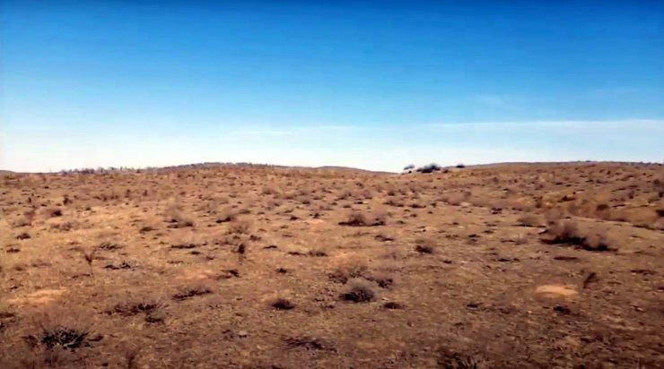 Поиск сокровищ на астраханских полях попал на видео