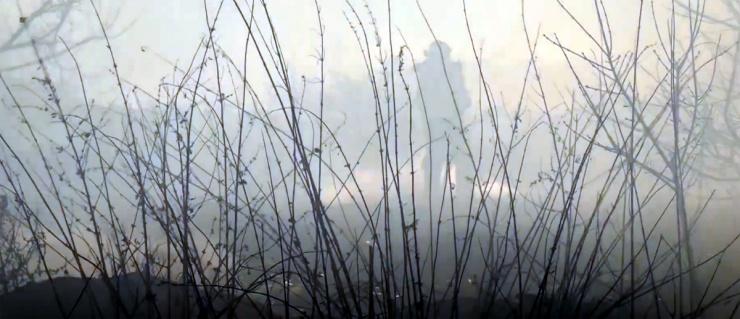 В Астраханской области введен особый противопожарный режим