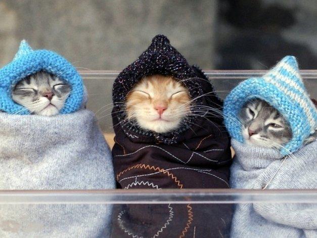 Стало известно, когда в Астрахани наступит похолодание