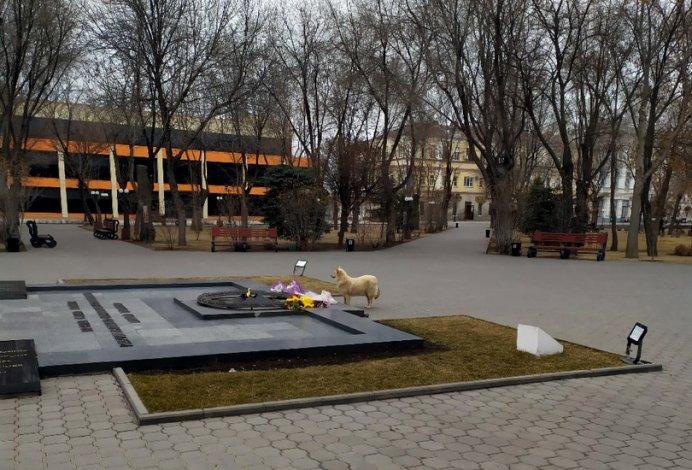 Астраханские бродячие псы покусились на Вечный огонь