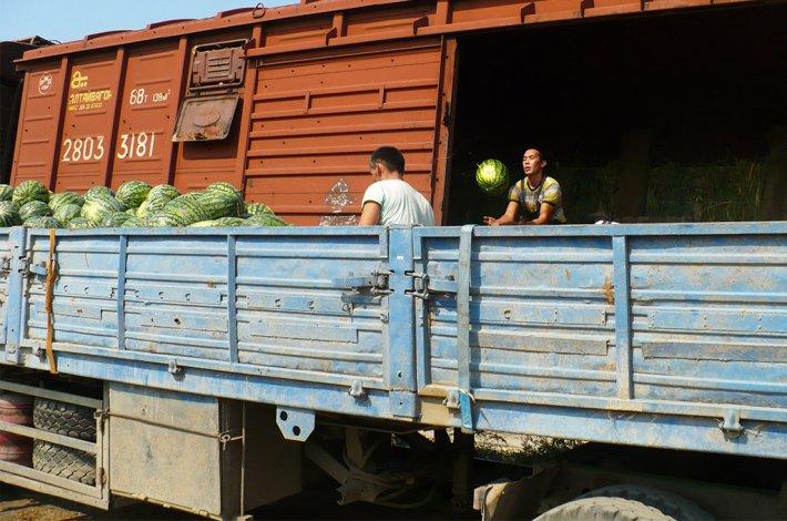 Первые вагоны с картофелем и арбузами отправились из Астрахани по железной дороге