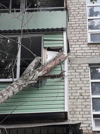 Праздничным утром дерево упало на астраханскую многоэтажку