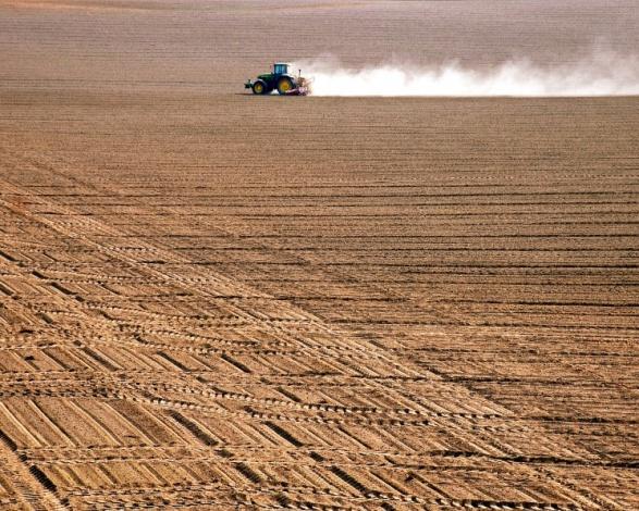 Астраханский урожай-2021 будет высоким: аграрии закрыли сезон сева озимых