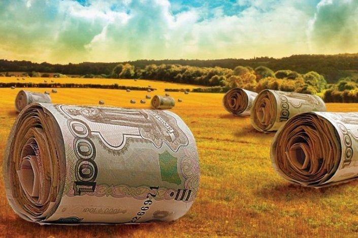 Федеральные субсидии доходят не до всех астраханских фермеров