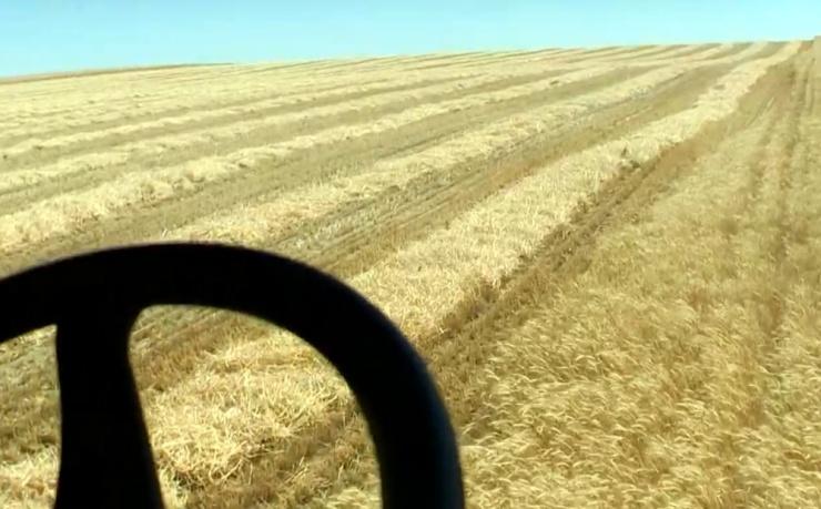 О сельском хозяйстве Нидерландов и Астраханской области