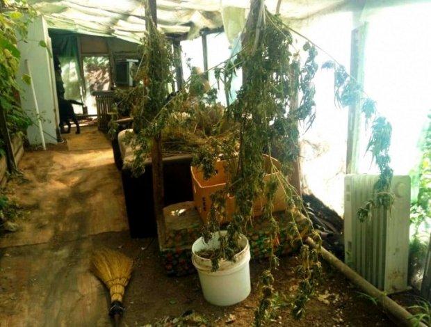 Астраханский старичок попался на наркоторговле