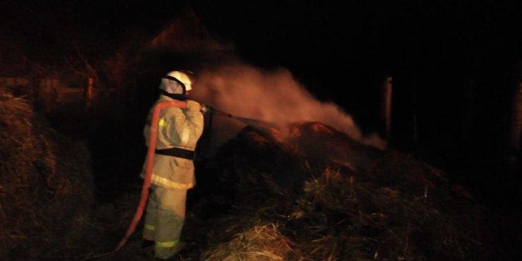 Минувшей ночью под Астраханью сгорело 90 рулонов сена