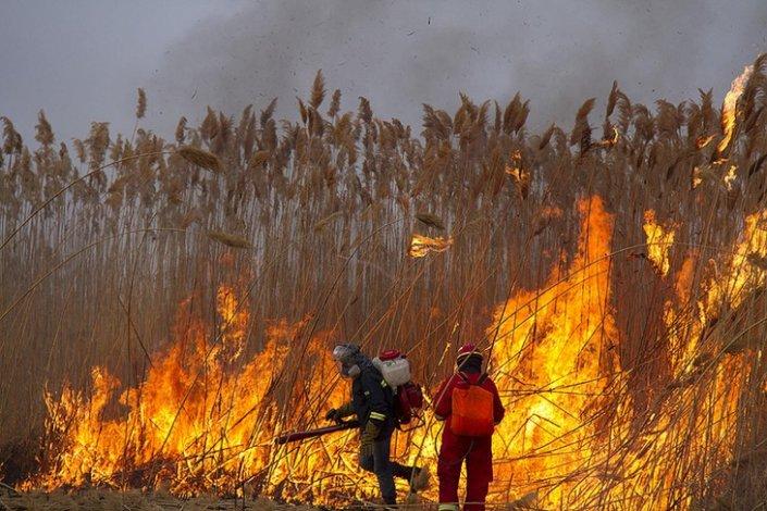 Астраханцев предупредили о вероятности природных пожаров