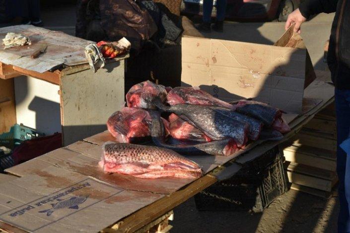 В Астрахани продолжается борьба с незаконной торговлей рыбой