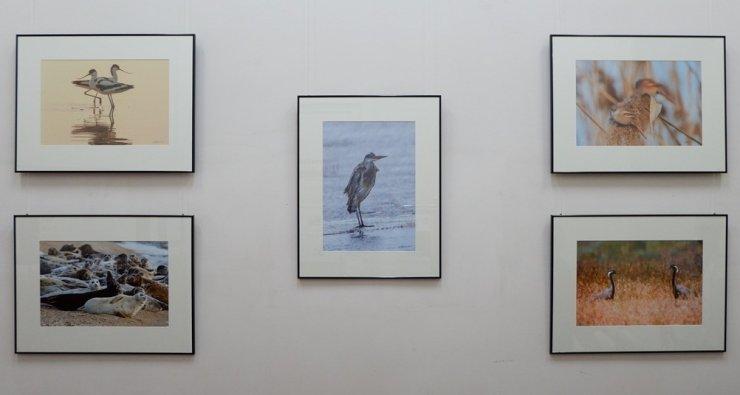 Работы известного астраханского фотографа представлены в  Краеведческом музее