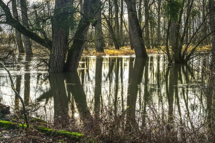 Ученые КаспНИРХ анализируют осенний паводок в Астраханской области