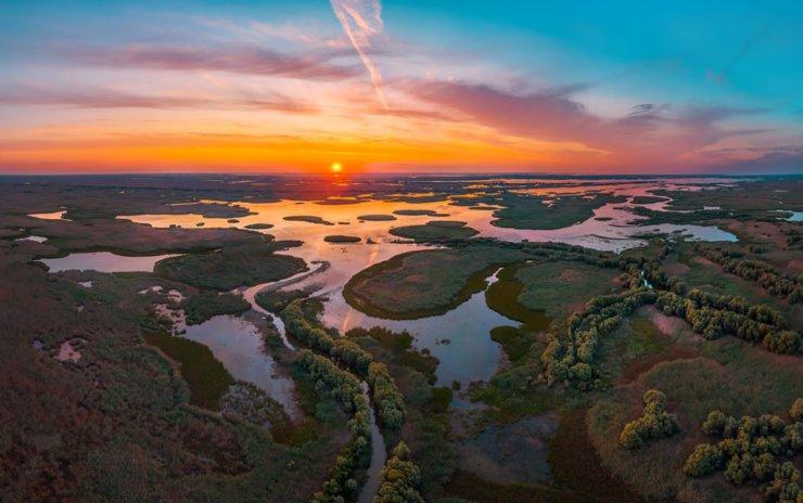 В Астраханском заповеднике началось массовое цветение