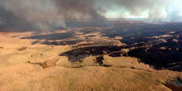 Под Астраханью выгорело 17 гектаров земли
